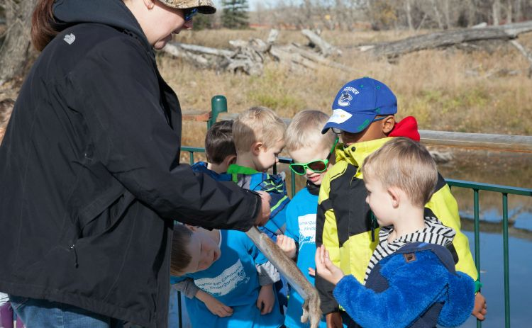Glamorgan Community Kindergarten Inglewood Bird Sanctuary